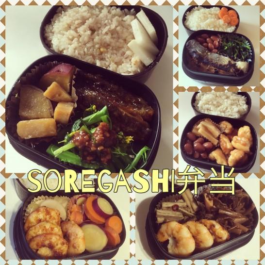 """今週の""""soregashi弁当"""" vol.5"""