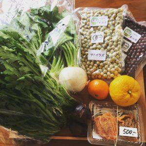「野菜を一日350g食べましょう」っていうけど、難しくない?そしてその理由は?